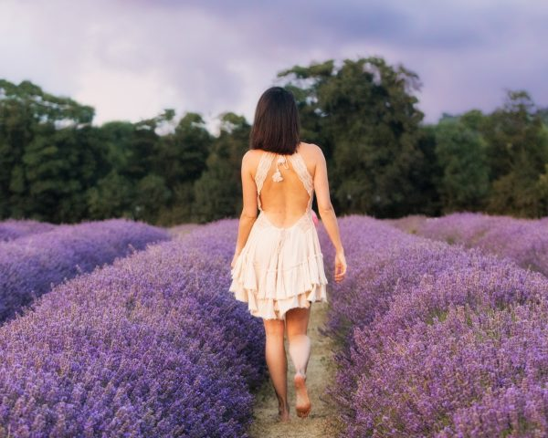Lavender fields photoshoot